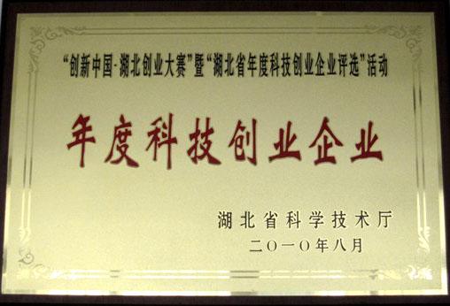 创新中国2010《年度科技创业企业》