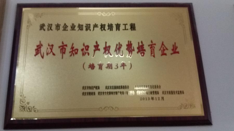 武汉市知识产权优势培育企业