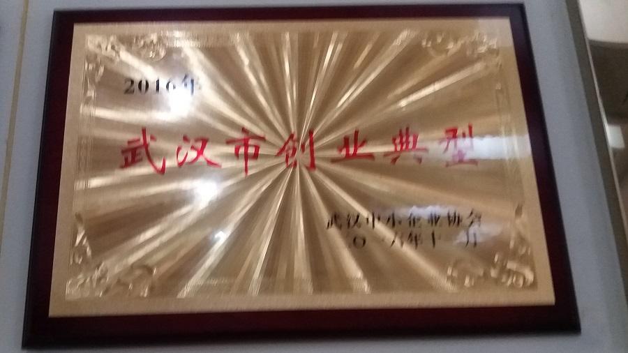 武汉市创业典型