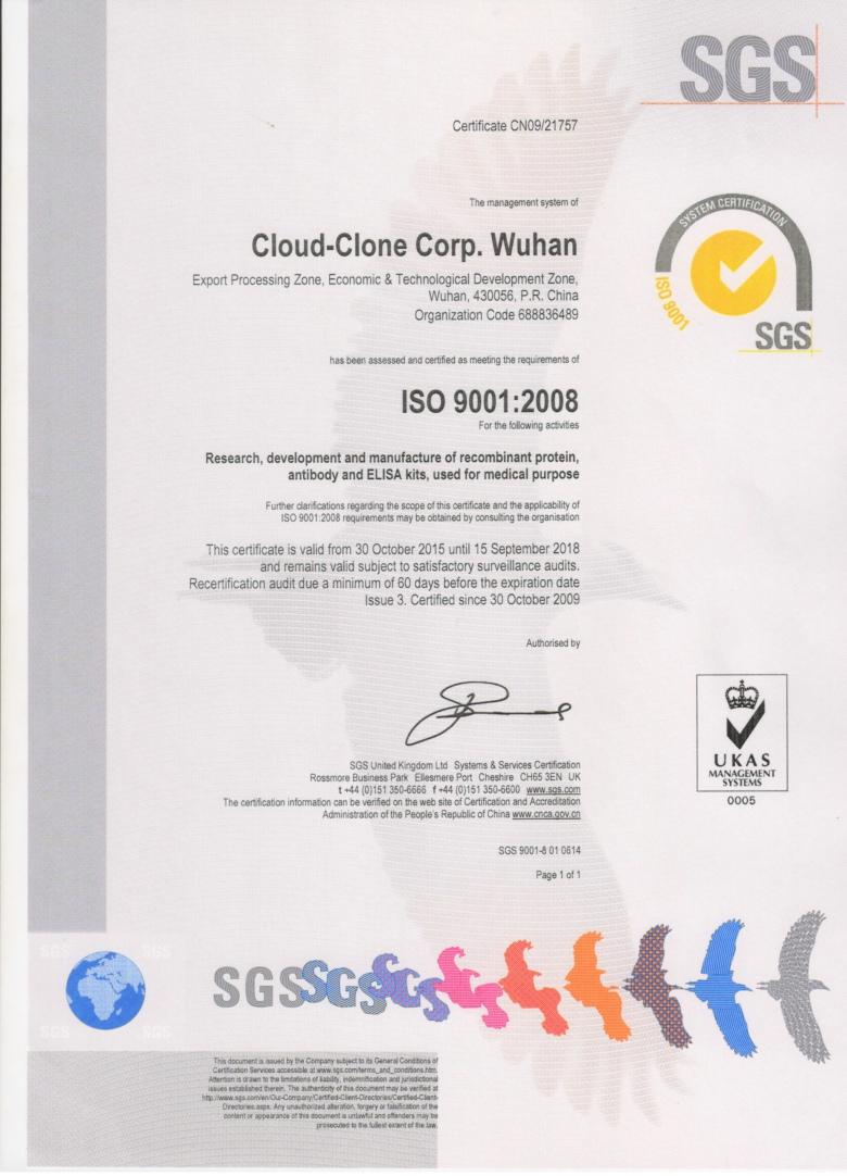ISO9001:2008证书(云克隆)