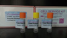 Total Protein/DNA/RNA Extract Customized Service Offer
