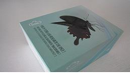 长臂生物素标记试剂盒