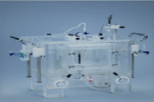 Isolated Heart Perfusion System for Small Animals IPS529